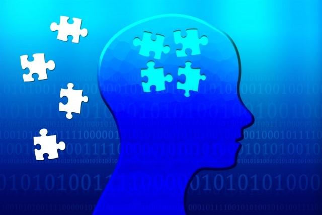 過去の記憶・脳